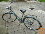 Žensko kolo