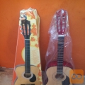 Prodam klasično kitaro