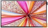 "Samsung QM55F 139,7 cm (55"") LED 4K Ultra HD"