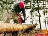 Motorne gozdarske žage Jonsered