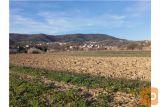 Kmetijsko Zemljišče Vanganel - 2363 M2