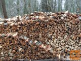 Suha bukova drva, goriška, Ajdovščina